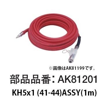 AK81201